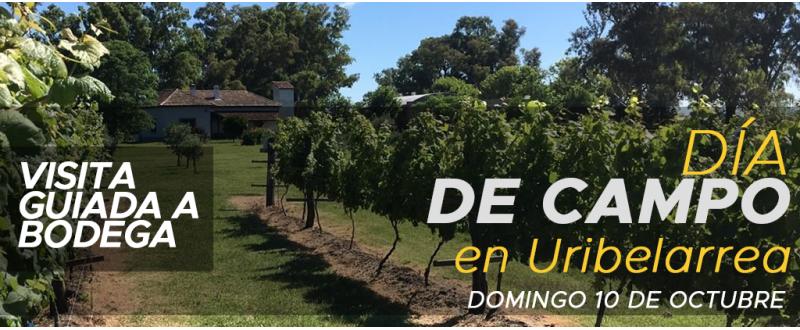 Día de campo en Uribelarrea